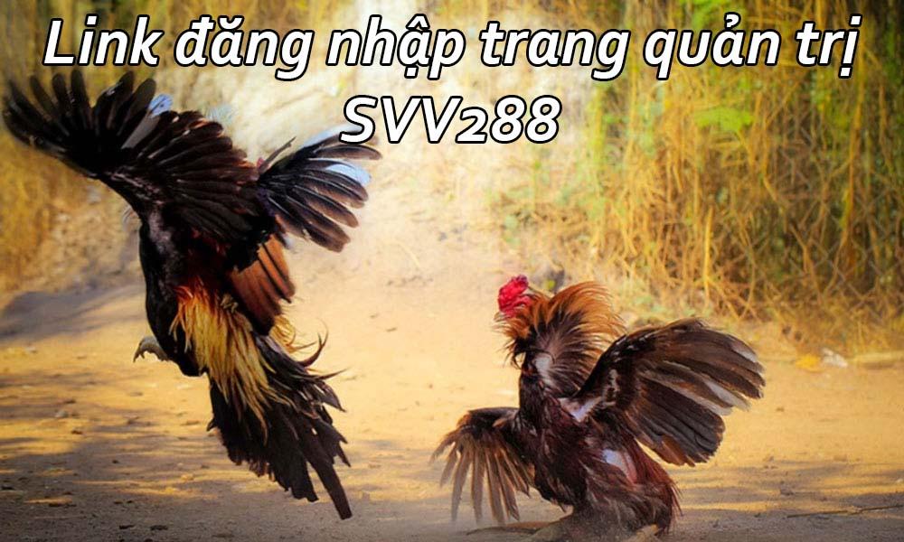 Link đăng nhập trang quản trị SVV288