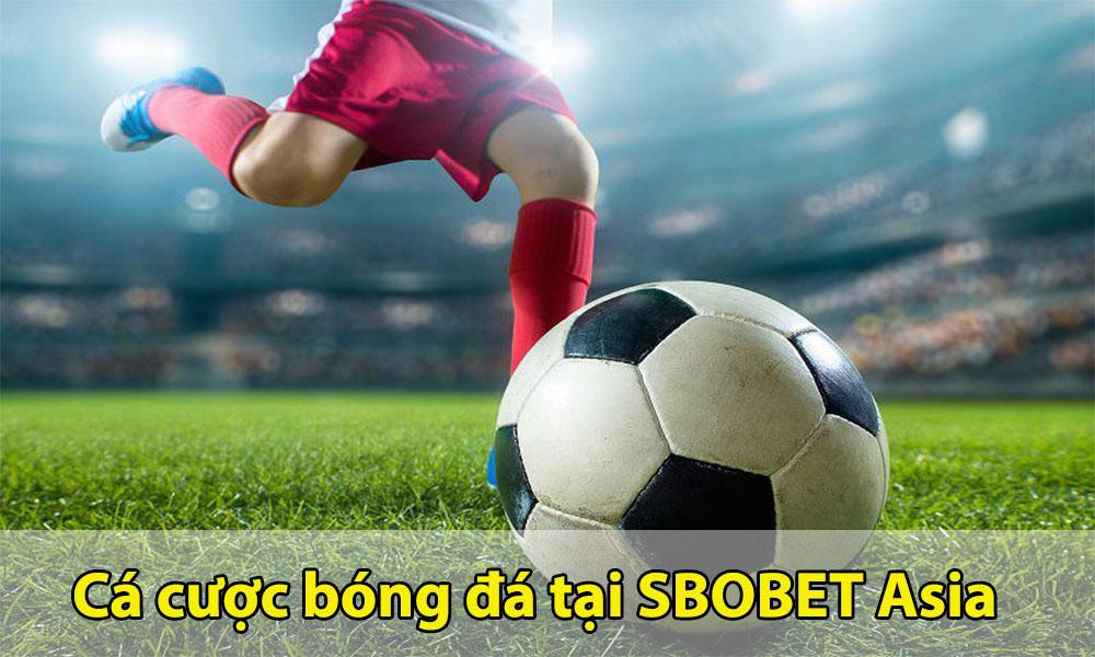Hướng dẫn tham gia cá cược tại SBOBET Asia