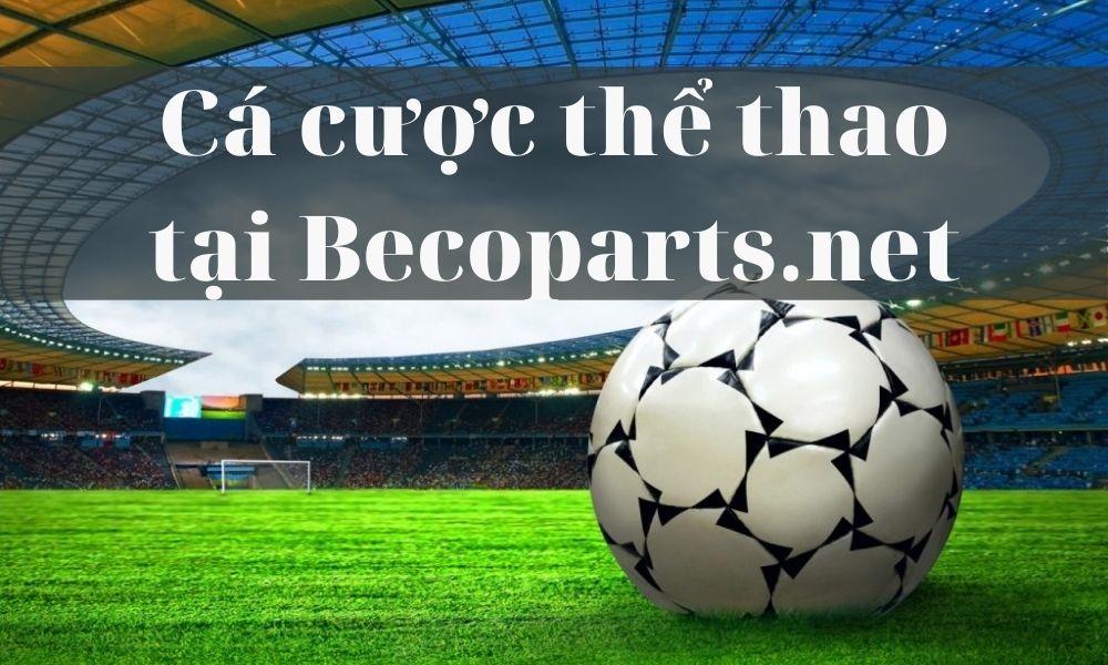 Tham gia cá cược thể thao tại Becoparts